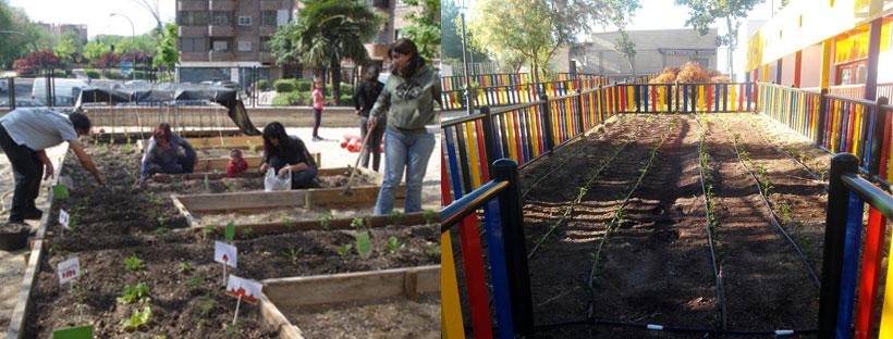 El huerto escolar del CEIP El Pilar como espacio de participación y aprendizaje